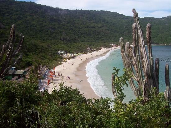 Forno Beach : Praia do Forno - Vista desde el morro