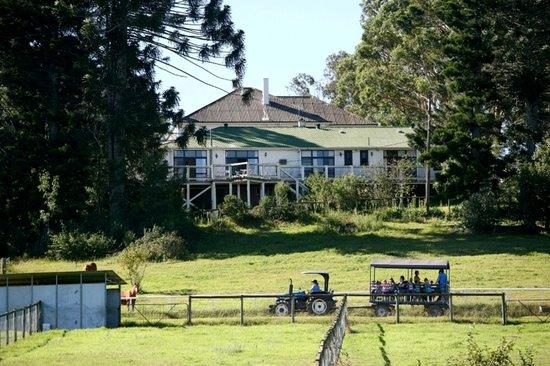 Mowbray Park Farmstay Holidays