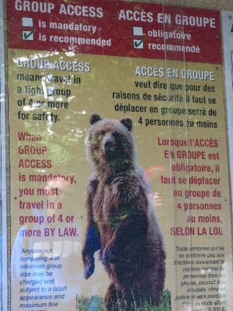 Great Divide Nature Interpretation: Grizzly Bear Sign