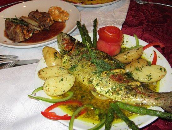 Rupsha: Himalayan Fish