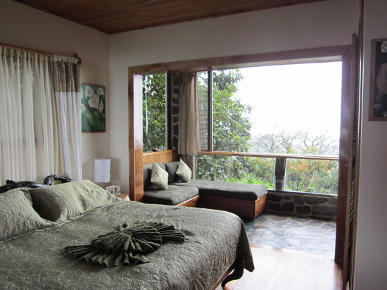 Hidden Canopy Treehouses Boutique Hotel: Clouds view