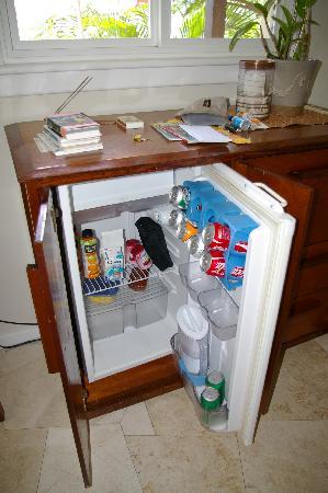 Sail View: Hidden Refrigerator