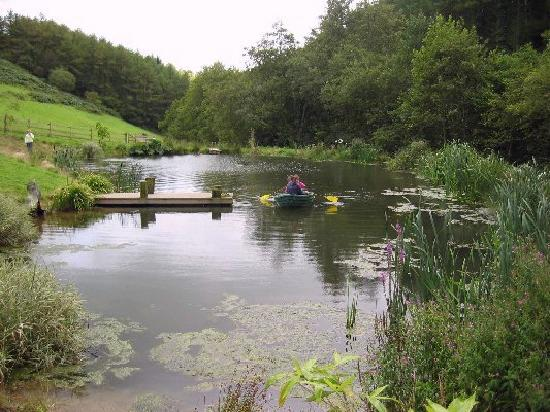 Huxtable Farm Bed & Breakfast: Pond situated on our Devon Wildlife Farm Trail