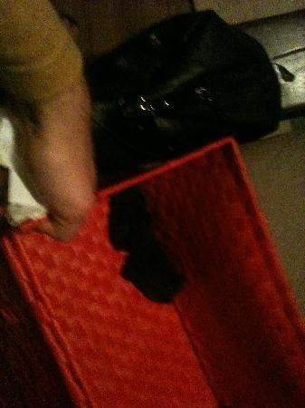 Cascina al Campaccio: calze sporche in cassetta 2