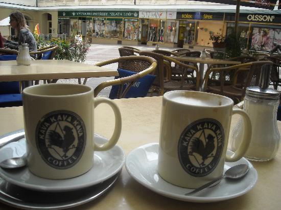 Kava Kava Kava: Káva