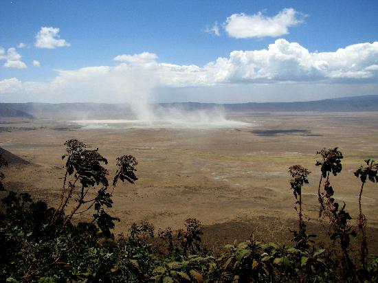 Ngorongoro Conservation Area, แทนซาเนีย: Dried Salt from Lake Magadi swirl skyward