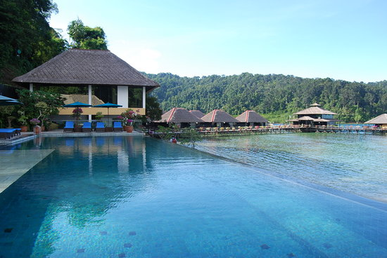 Gayana Marine Resort: Infinity pool facing reception