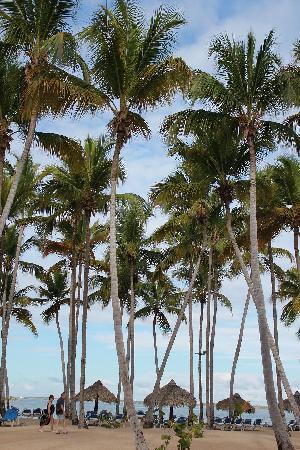 Grand Bahia Principe La Romana: Gran Bahia Principe La Romana Beach