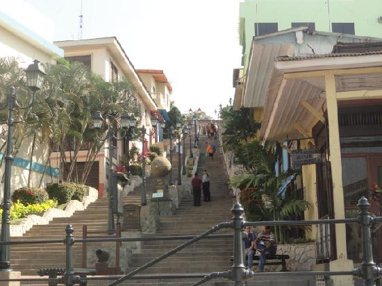 Hotel Jeshua : el cerro