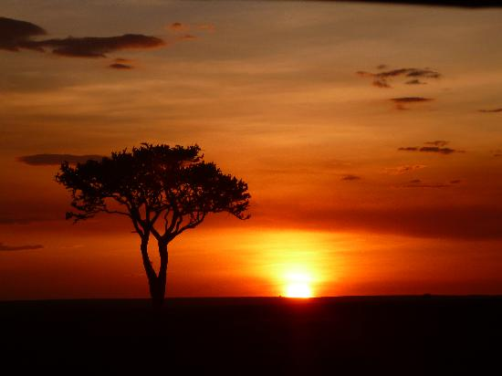Oldarpoi Mara Camp: Mara sunset