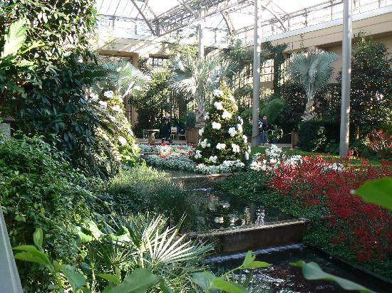 Beautiful View From Conversatory Picture Of Longwood Gardens Kennett Square Tripadvisor