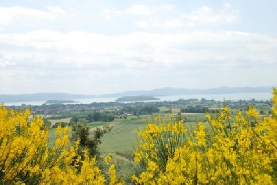Borgo Sanguineto: Panorama