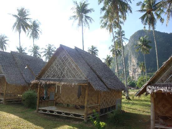 Chong Khao Bungalow : the bungalow