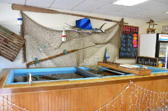 Falmouth Fish Market Inc.: Lobster tank