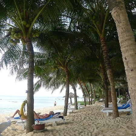 Thien Hai Son Resort: Beach