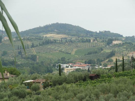 Il Colto: view of vineyard below