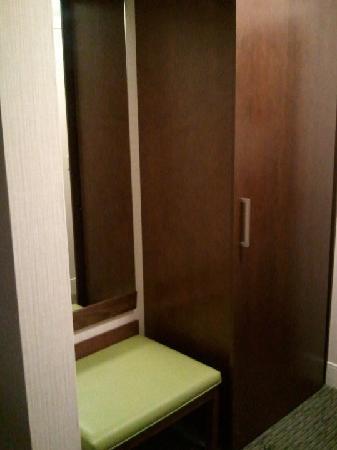 Radisson Hotel Corning : Cool closet/bench comb