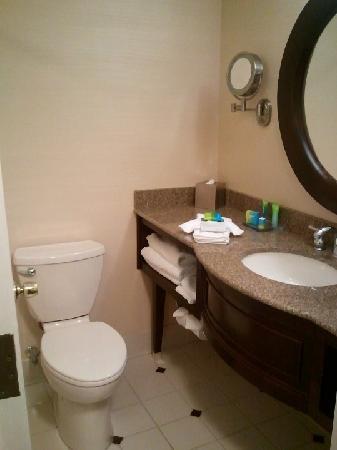Radisson Hotel Corning : Decent bathroom