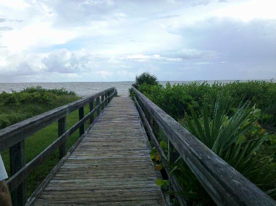 Sandpiper Inn: Boardwalk