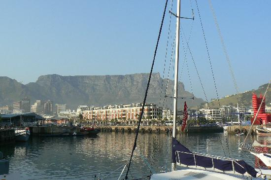 The PortsWood: The V&A Waterfront area