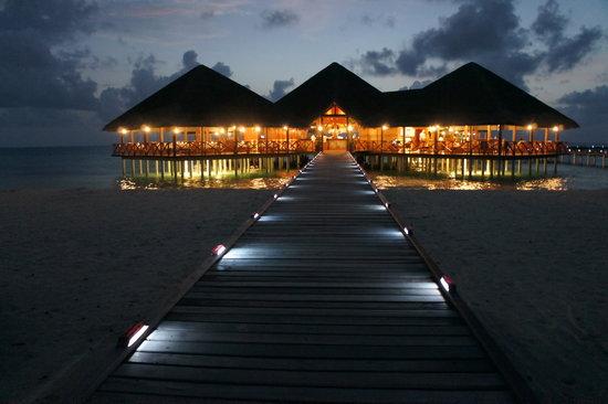 Medhufushi Island: The overwater Bar