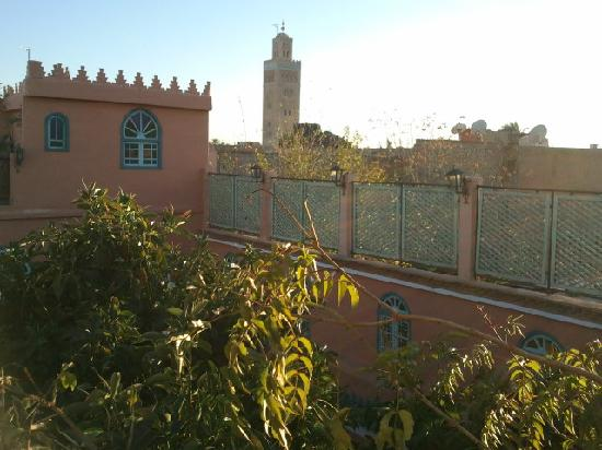 Riad Catalina: rooftop view