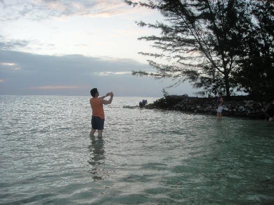 Turquoise Bay Dive & Beach Resort: Islita cerca del hotel