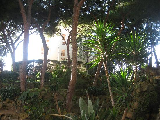The Doña Lola Club: garden area and waterfall at Dona