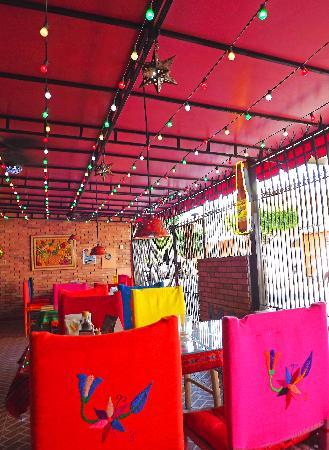 Te Amo Lucy's at the Loro de Oro Inn