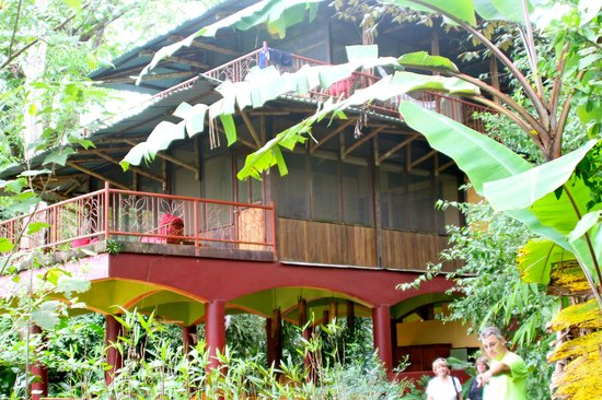 Iguana Lodge: Our own building with our rooms on 2nd and 3rd floor