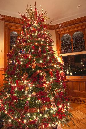 Stetson Mansion: Gorgeous dining room Christmas tree