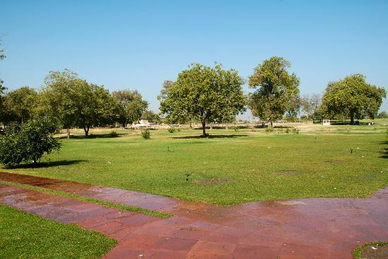 Awesome Rani Ki Vav Gardens