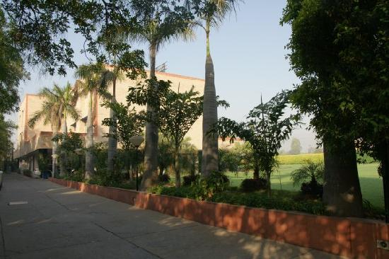 The Radha Ashok: Driveway