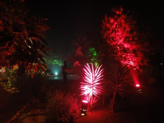 The Radha Ashok: Pool Party