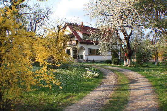 Hilde's Residence: The main entrance