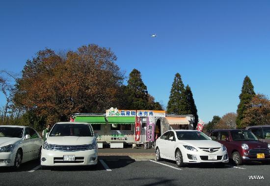 成田市, 千葉県, さくらの山直売所組合