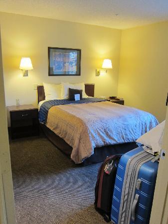 Candlewood Suites Raleigh - Crabtree : Bedroom