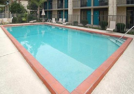 Quality Inn Orlando Airport: Outdoor Pool