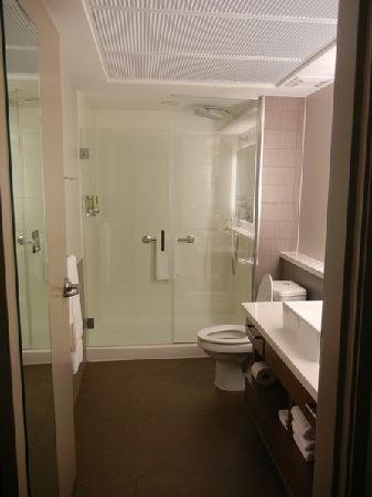 Element Dallas Fort Worth Airport North: bathroom with the walk-in shower
