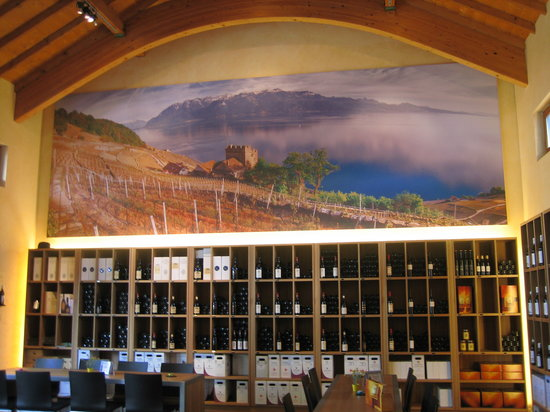 Cully, Suiza: The wine tasting room