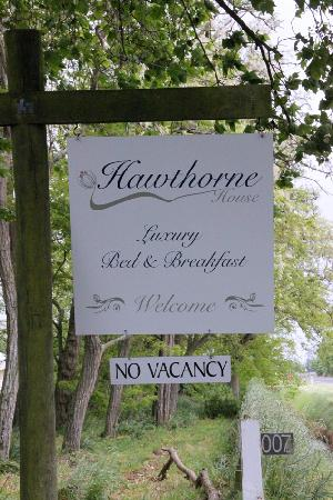 Hawthorne House: Street Sign