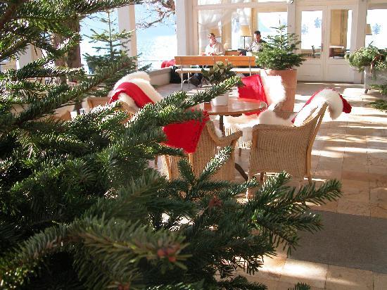 hotel terrasse am see bewertungen fotos preisvergleich vitznau. Black Bedroom Furniture Sets. Home Design Ideas