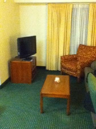 Residence Inn Allentown Bethlehem/Lehigh Valley Airport : the living room