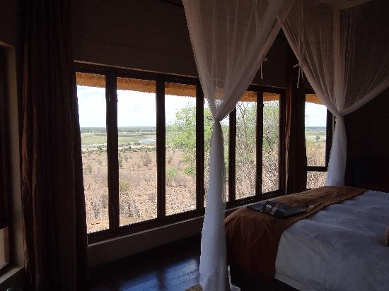 Ngoma Safari Lodge: The view from the room