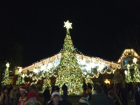 Busch Gardens Christmas Town O Tannenbaum Lights And Music Show Picture Of Busch Gardens