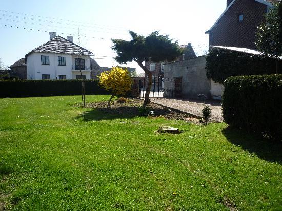 Stralingsvrije Oase Bed & Breakfast: Part of front yard