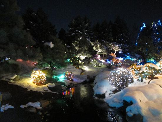 Denver Botanic Gardens: Blossoms of Lights