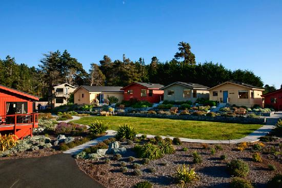 Cottages at Little River Cove: A Parklike Surrounding