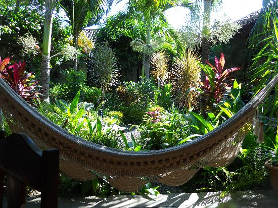 La Alcoba: Cafe - pull up a Hammock!