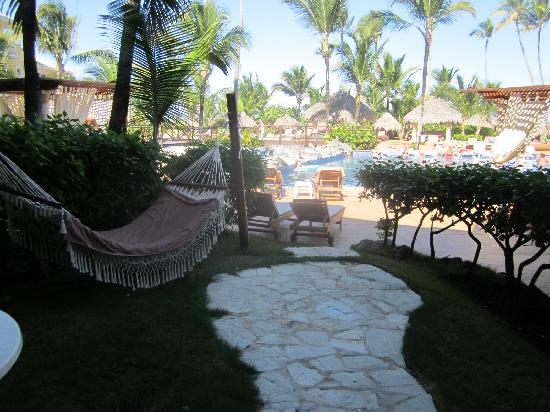 Excellence Punta Cana : swim up room???